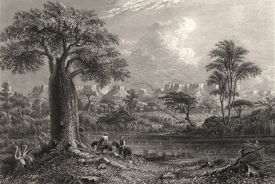 """Associate Product """"Baines River, Northern Australia"""", by E.C. BOOTH/T. BAINES. NT, Australia c1874"""