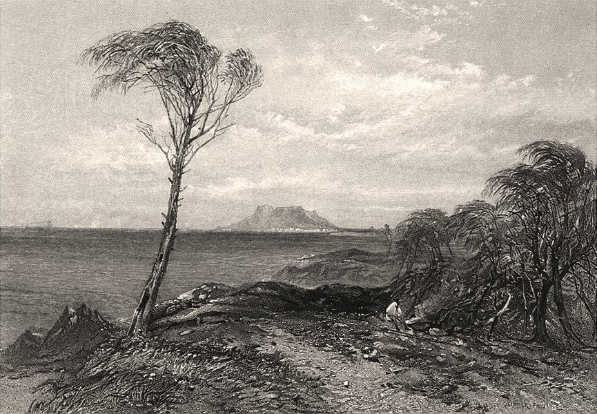 "Associate Product ""Maria Island, Tasmania"". Edwin Carton BOOTH/John Skinner PROUT. Australia c1874"