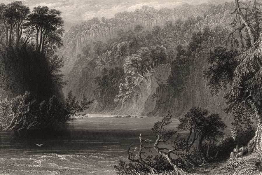 Associate Product Coilsfield Banks, water of Ayr. Ayr River. Scotland. BARTLETT c1840 old print