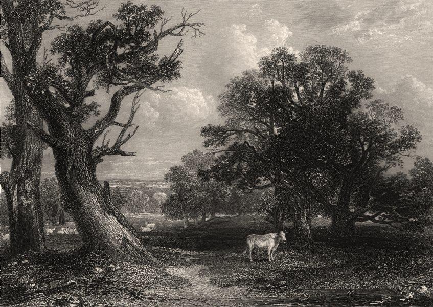 Associate Product Scene in Cadzow Park. Lanark-shire. Scotland. MCCULLOCH c1840 old print