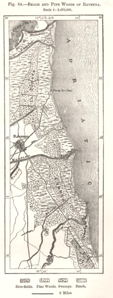 Associate Product Beach and Pine Woods of Ravenna. Italy. Sketch map 1885 old antique chart