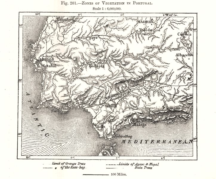 Associate Product Zones of Vegetation in Portugal & Andalucia. Sketch map 1885 old antique