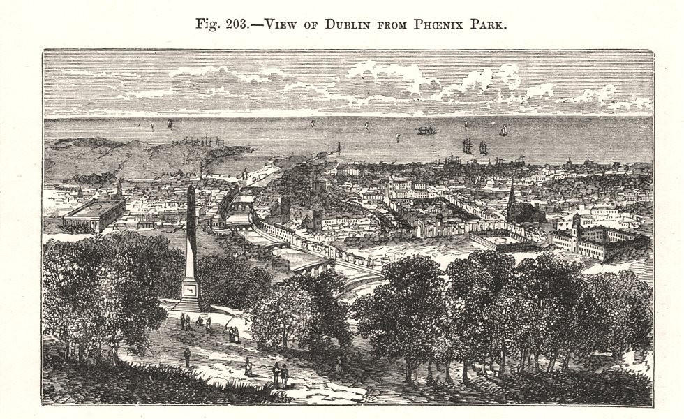 Associate Product View of Dublin from Phoenix Park. Ireland 1885 old antique print picture