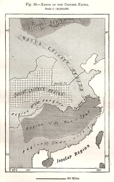 Associate Product Range of the Chinese Fauna. China. Sketch map 1885 old antique plan chart