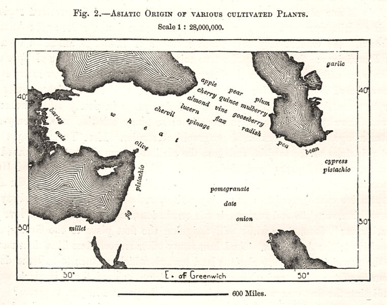 Asiatic Origin of Various Cultivated Plants. Middle East. Sketch map 1885