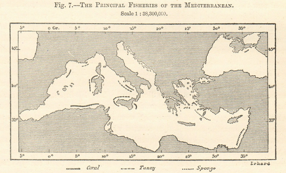 Associate Product Mediterranean Principal Fisheries sketch map. Coral Tunny Sponge 1885 old