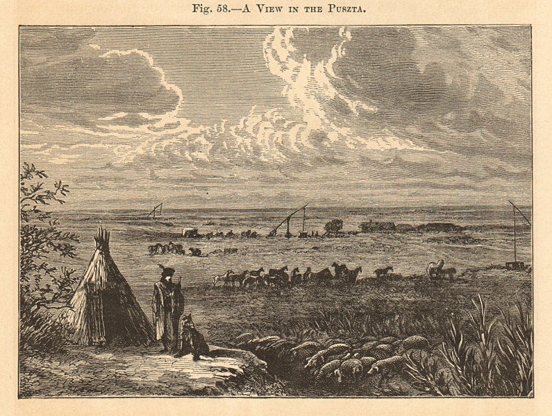 Associate Product A View in the Puszta. Pannonian Steppe. Hungary. Landscapes 1885 old print
