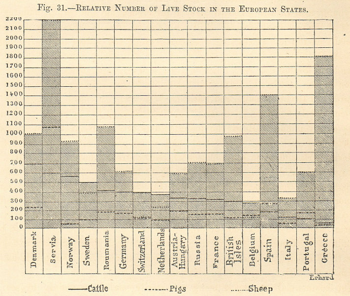 Associate Product Number of Livestock in European countries. Cattle pigs sheep. Graph 1885 print
