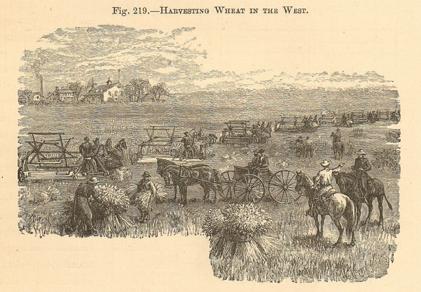 Associate Product Harvesting wheat in the west. USA Plains. Farming 1885 old antique print