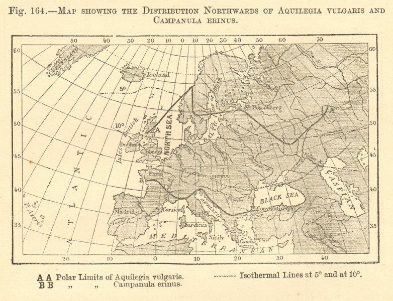 Associate Product Aquilegia Vulgaris & Campanula Erinus distribution. Europe. Sketch map 1886