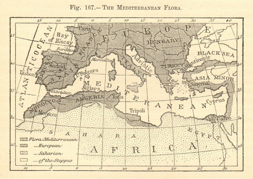 Associate Product The Mediterranean Flora. Sketch map 1886 old antique vintage plan chart