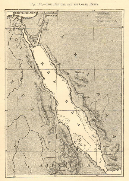 Associate Product The Red Sea and its coral reefs. Arabia Egypt. Sketch map 1886 old antique