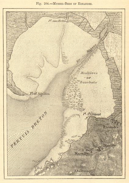 Associate Product Esnandes mussel beds. Charente-Maritime. Baie de l'Aiguillon. Sketch map 1886