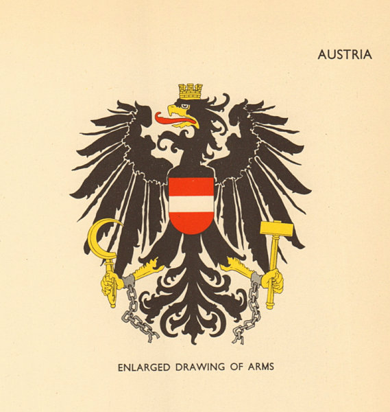Associate Product AUSTRIA FLAGS. Enlarged Drawing of Arms 1955 old vintage print picture