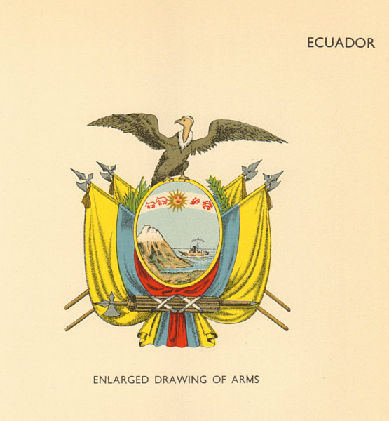 Associate Product ECUADOR FLAGS. Enlarged Drawing of Arms 1955 old vintage print picture