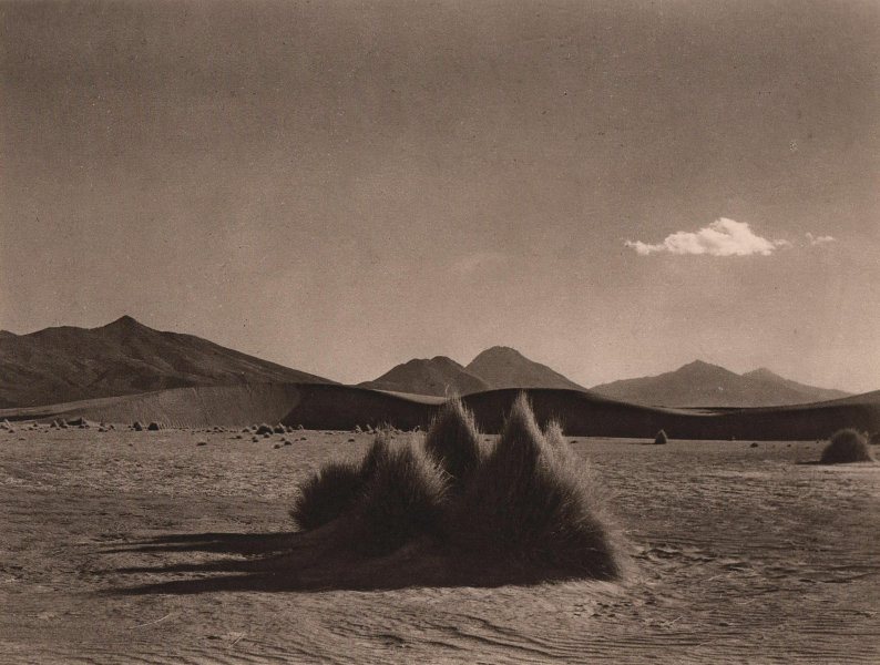 Desert near Sabaya in the Province of Carangas. Bolivia 1928 old vintage print