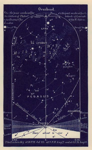Eastern night sky star chart August. Leo. July 22-Aug 23. PROCTOR 1882 print