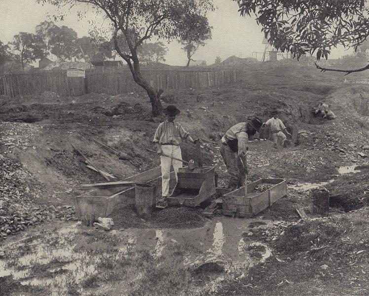 Australian gold diggings. The cradle at work. STODDARD 1895 antique print