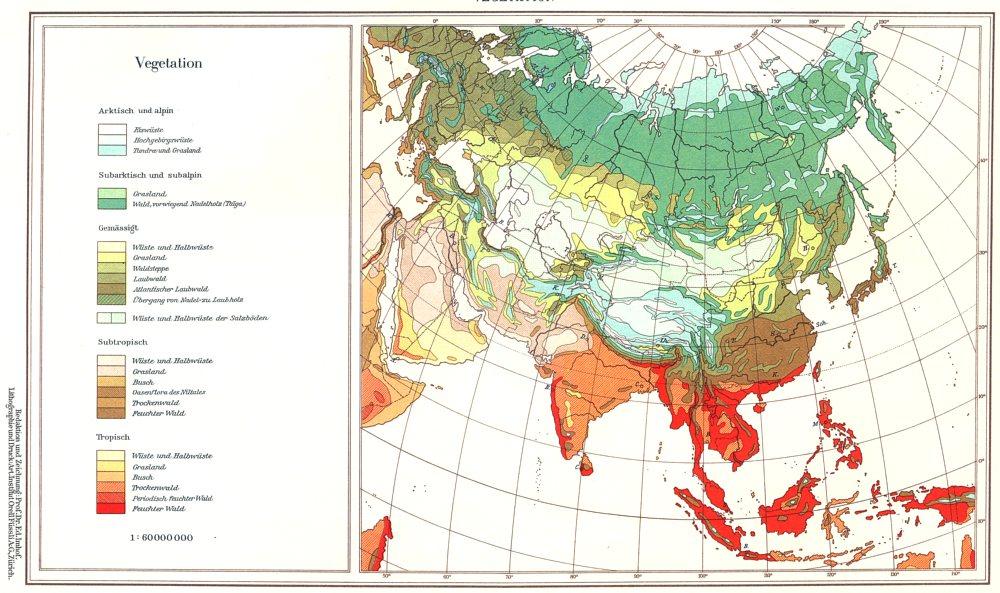 Associate Product ASIA.Asien;Vegetation 1958 old vintage map plan chart