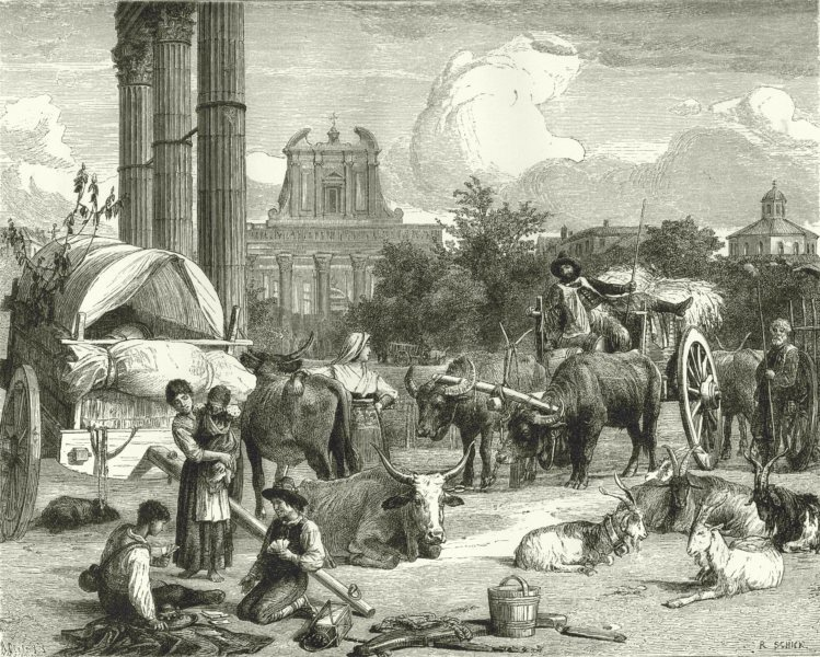 Associate Product ROME. Campo Vaccino, Rome 1877 old antique vintage print picture