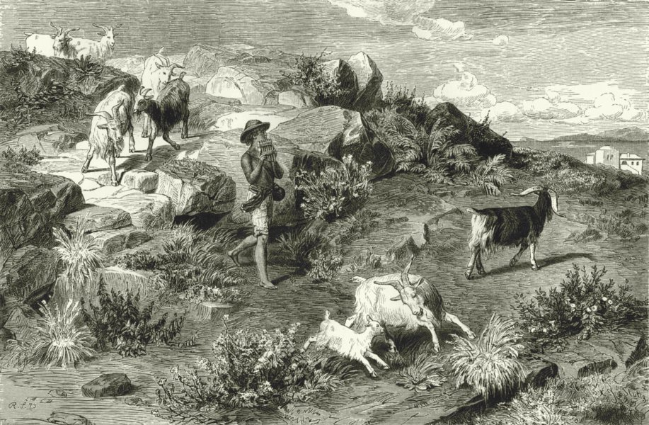 Associate Product ROME. Roman Campagna. Shepherd boy in the Campagna 1877 old antique print