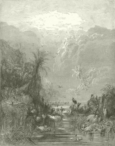 MILTON PARADISE LOST.Meanwhile tepid caves fens shores,brood numerous c1886