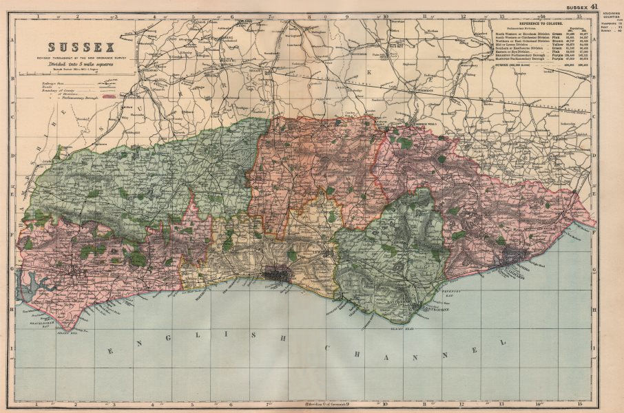 Associate Product SUSSEX. Showing Parliamentary divisions, boroughs & parks. BACON 1896 old map