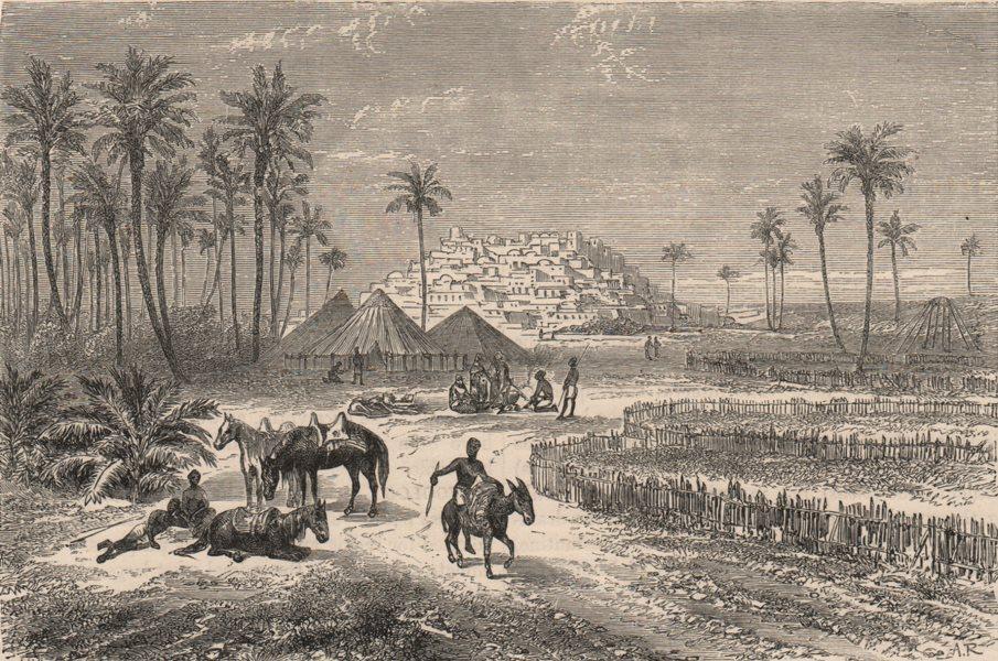 Associate Product NIGERIA. Oasis of Ederi, Fezzan 1882 old antique vintage print picture