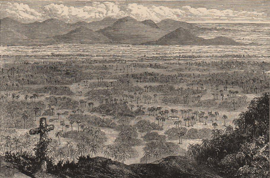 SANTO DOMINGO. The Vega Real from Santo Cerro. Dominican Republic 1882 print