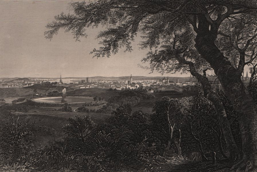 Associate Product BALTIMORE. View of the city from Druid Hill park. Maryland 1874 old print