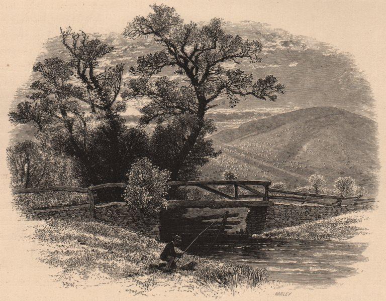 Associate Product MASSACHUSETTS. Mount Washington, from Sheffield. Fishing. Housatonic 1874
