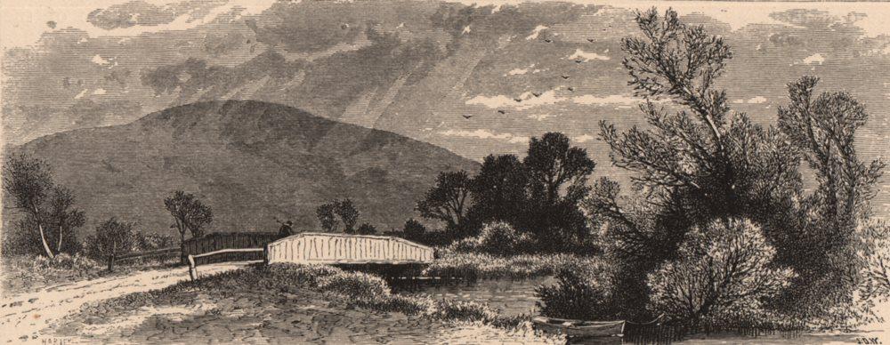 Associate Product MASSACHUSETTS. Lenox Station. Cattle & cart. Housatonic 1874 old antique print