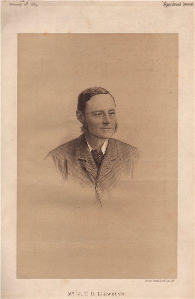 Associate Product Mr. J.T.D. Llewelyn 1883 old antique vintage print picture