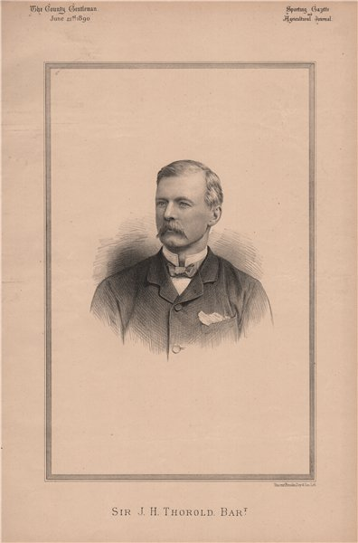 Associate Product Sir J.H. Thorold Bart 1890 antique vintage print picture