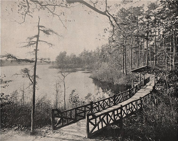Associate Product Kissing Bridge, Lakewood, New Jersey 1895 old antique vintage print picture