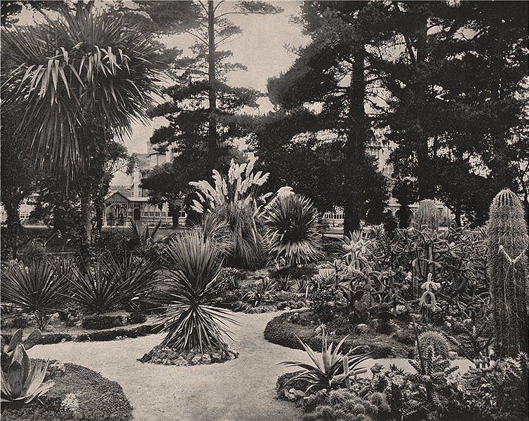 Associate Product Arizona Garden, Hotel Del Momte, Monterey, California. Hermann Hall 1895 print