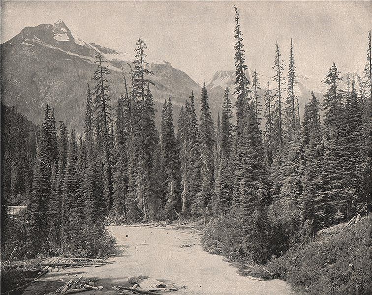 Associate Product Mount Cheops & Mt Hermit, Selkirk Range, Rocky Mountains, British Columbia 1895