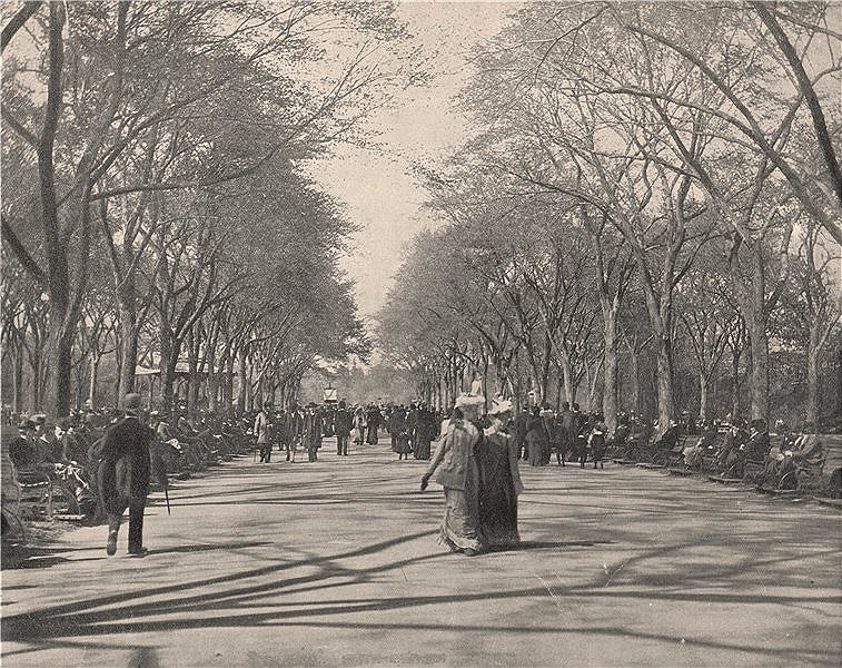 Associate Product The Mall, Central Park, New York City 1895 old antique vintage print picture