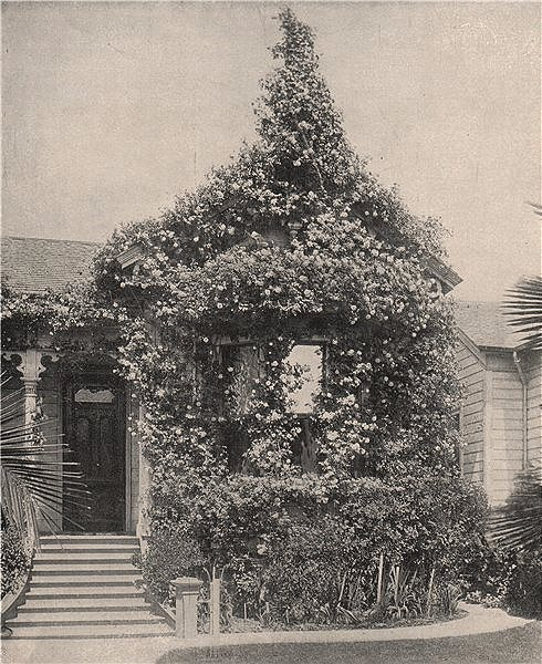 Associate Product Cottage of roses, Street South Spring Street, Los Angeles, California 1895