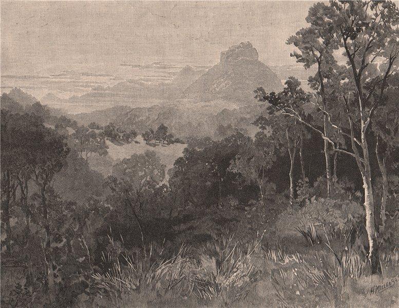 Associate Product MOUNT LINDSAY. Queensland. Australia 1888 old antique vintage print picture