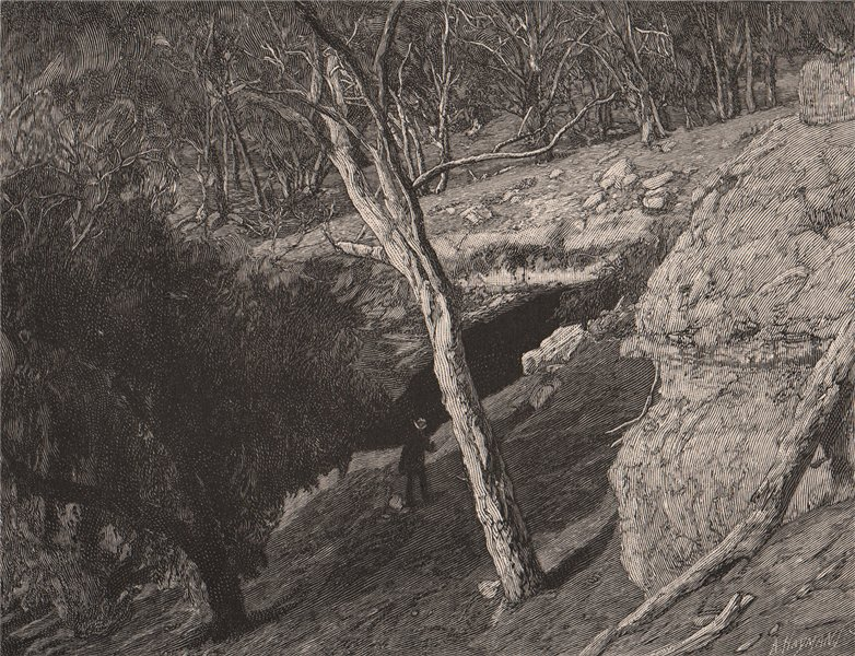 Associate Product Kelly's Cave, MANSFIELD. Victoria, Australia 1888 old antique print picture