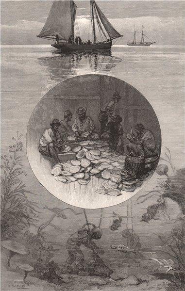 Associate Product Pearl fishery, Torres Straits. Melanesia. Australia 1888 old antique print