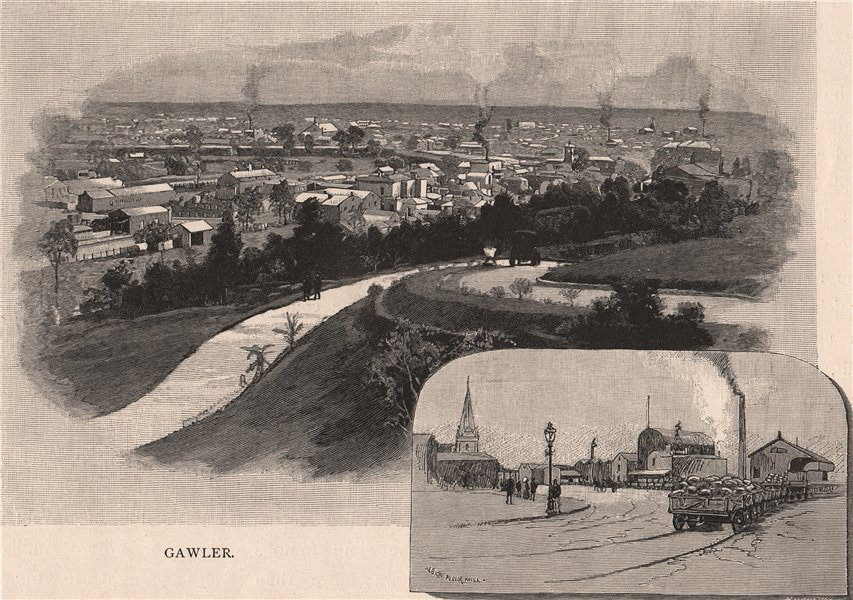 Associate Product GAWLER. South Australia 1888 old antique vintage print picture