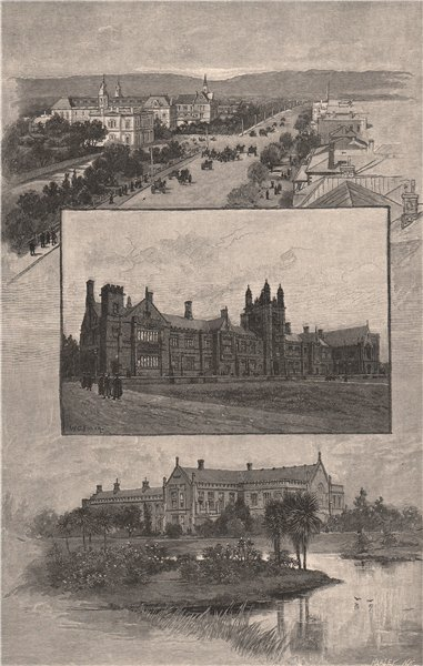 Associate Product Universities of Adelaide, Sydney, and Melbourne. Australia 1888 old print