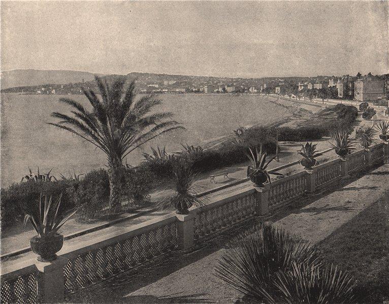 Associate Product CANNES. The panorama of La Croisette. Alpes-Maritimes 1895 old antique print