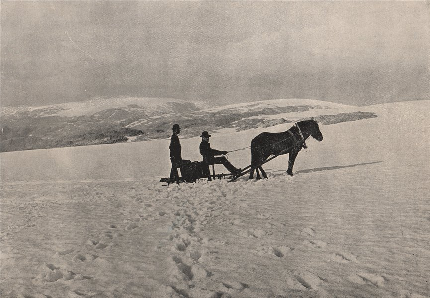 Associate Product FOLGEFONNA. Sleighing over the Folgefonna Glacier. Norway 1895 old print