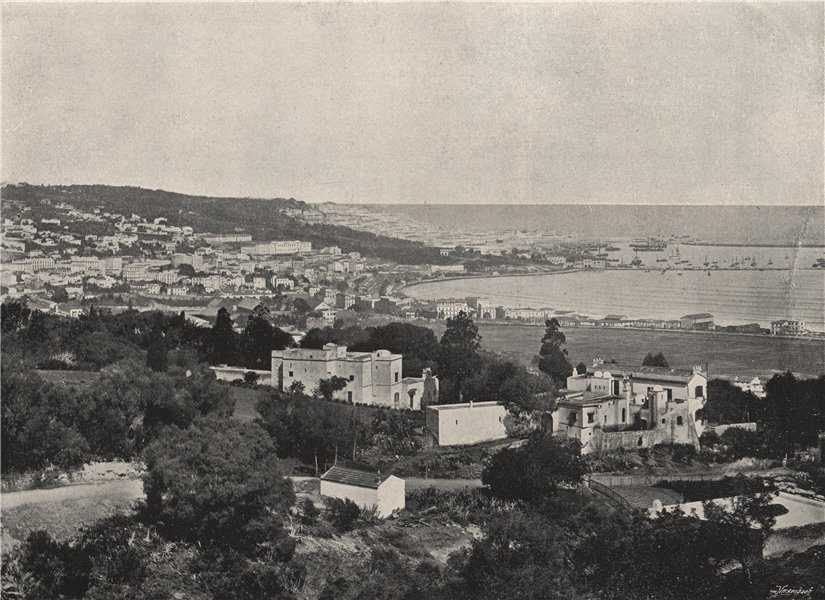 Associate Product ALGIERS. Panoramic view taken from Mustafa. Algeria 1895 old antique print