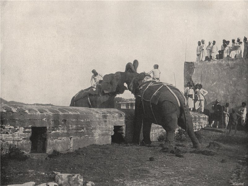 Associate Product HYDERABAD. An elephant fight. India 1895 old antique vintage print picture