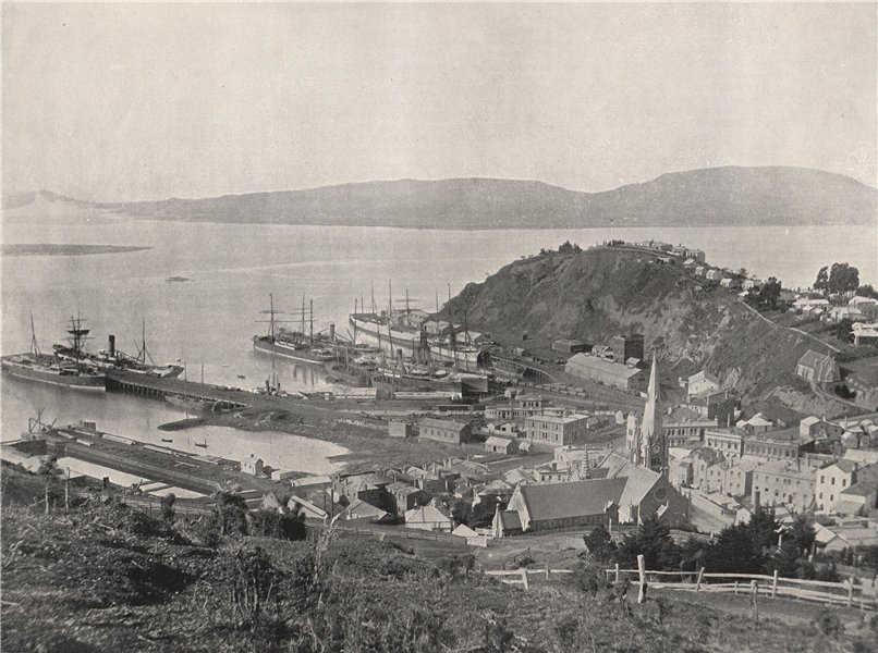 Associate Product PORT CHALMERS. The town and the harbour. New Zealand 1895 old antique print