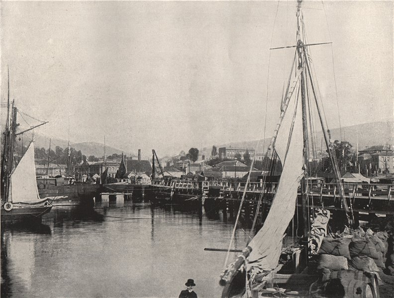 HOBART. Port Hobart. Tasmania 1895 old antique vintage print picture